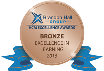 Bronze Excellence Award in Learning Strategy