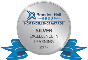 Silver Excellence Award for Custom Content Development